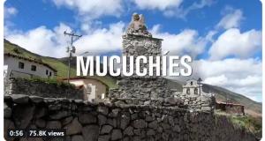 mucuchies