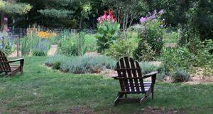 jardin_covid19